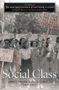 Image link for Volume 20: Social Class page